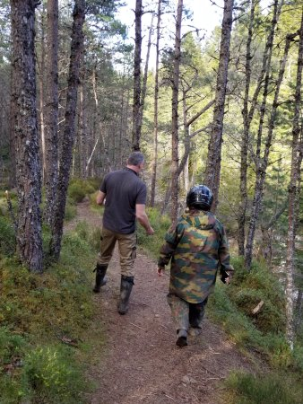 Newtonmore, UK: On our short jaunt to the waterfall....