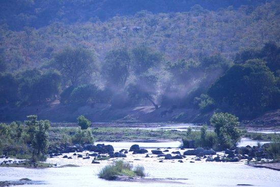 Phalaborwa, Sudáfrica: Views from the deck at River Lodge