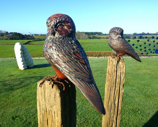 Tamahere, New Zealand: Owl sculptures by Sam Ludden on the sculpture lawn at Inspirit Gallery