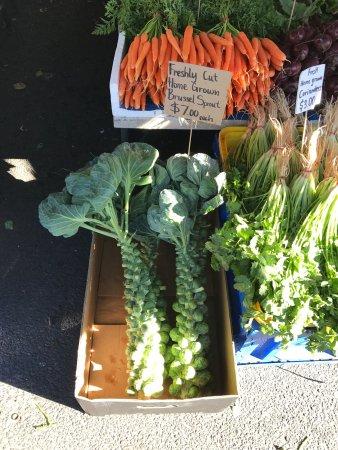 Salamanca Market: photo1.jpg