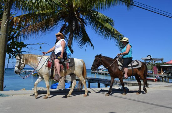 Roatan Combo Tour: Jungle Horseback...