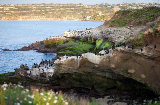 The 15 Best Things To Do In San Diego 2019 With Photos Tripadvisor