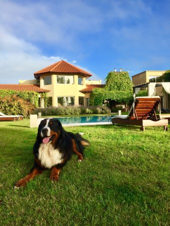 Villa Mansa Wine Hotel & Spa: photo0.jpg