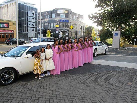 Hamilton, New Zealand: Yes 10 Stunning Bridesmaids!!!