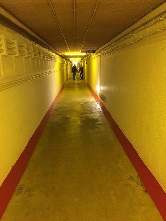 Crail, UK: photo1.jpg