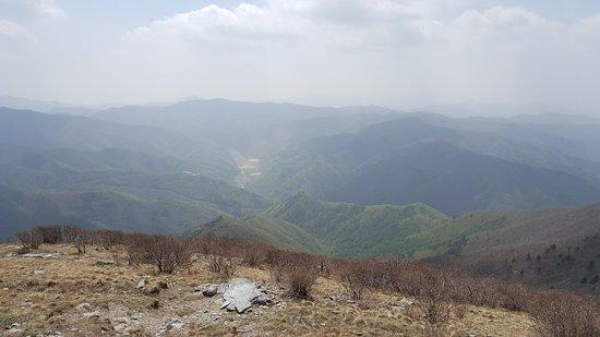 Taebaek, Corea del Sud: 20170505_134541_large.jpg