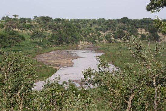 Tarangire National Park, Tanzania: photo0.jpg