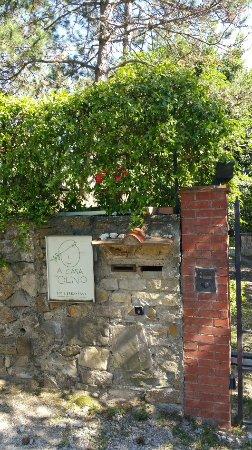 A Casa di Olivo: etwas besonders aussergewöhnliches !