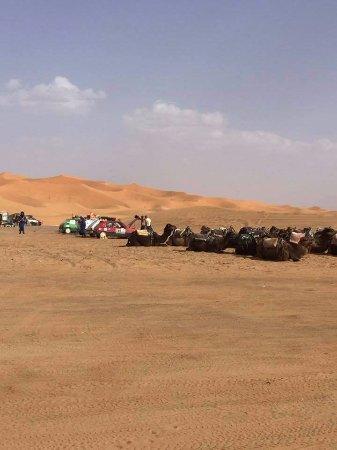 Marrakech-Tensift-El Haouz Region, Morocco: more tents