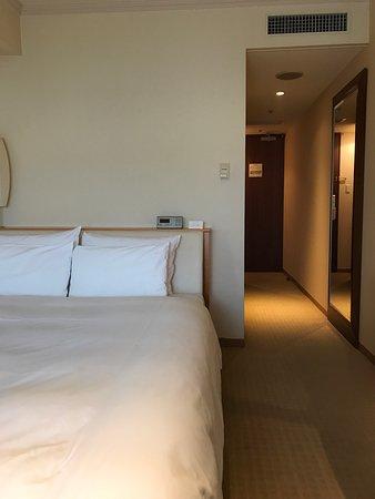 Hotel Associa Toyohashi: photo0.jpg