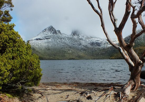 Discovery Parks - Cradle Mountain: Dove Lake and Cradle Mountain