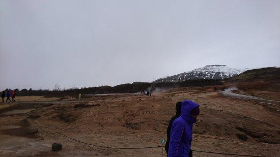 Mosfellsbaer, Island: DSC_2098_large.jpg