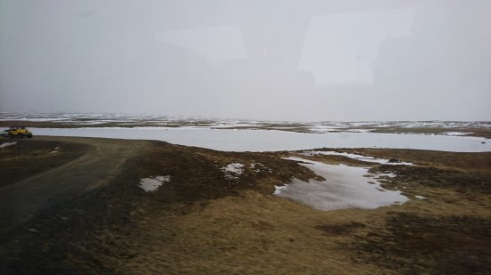 Mosfellsbaer, Iceland: DSC_2096_large.jpg