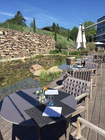 Saint-Legier-La Chiesaz, Schweiz: Terrasse au bord du biotope, Times Grill