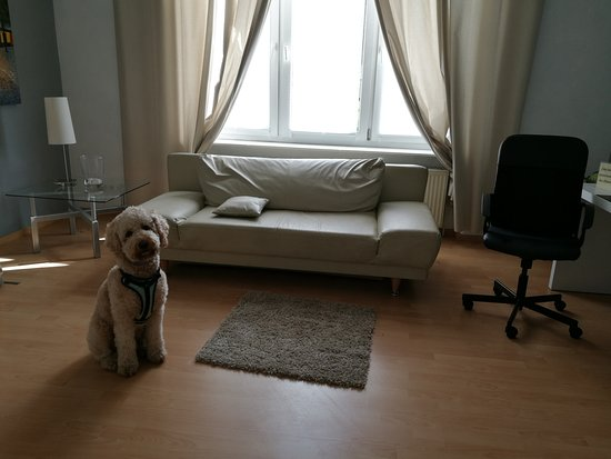 Marbella Hotel/Restaurant: Great hotel, very friendly host, wonderful place to stay when travel with a dog
