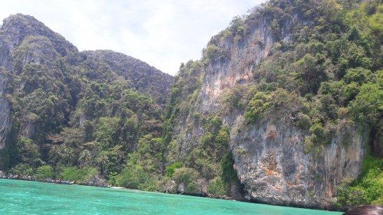 Mosquito Island: The Island
