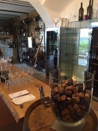 Gut Poessnitzberg : Wein- und Sektverkostung