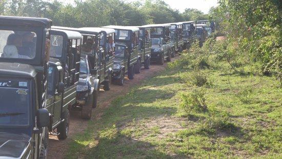 Tissamaharama, Sri Lanka: very crowded