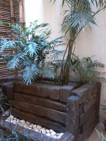 Hotel Margarit: Jardín interno decorado por Mariángeles y su compañera.