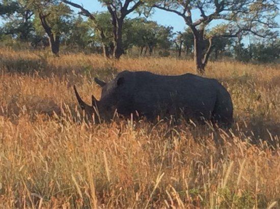 KwaZulu-Natal, South Africa: photo4.jpg