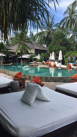 Nikki Beach Koh Samui : Quelques clichés de notre chambre, et de la piscine ..