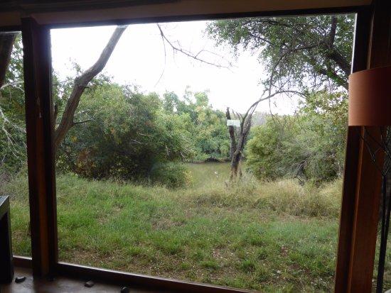 Madikwe Game Reserve Image