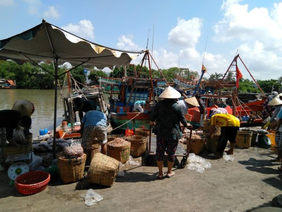 Ben Tre Province, Vietnam : Seafood Port in Ba Tri district