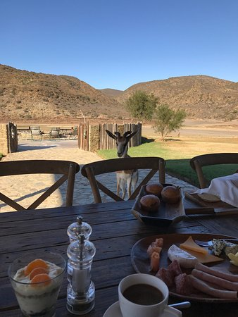 Madi-Madi Karoo Safari Lodge: photo1.jpg