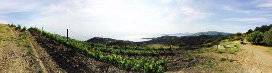 Colera, Испания: Panoramica Coma fredosa