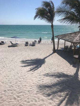 Coquina On The Beach Photo