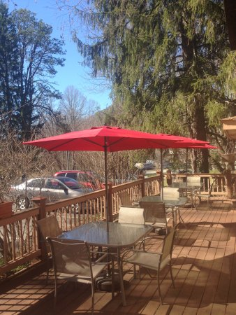 Arden, NC: Our dog-friendly patio