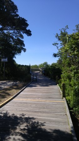 Duck, NC: bench and boardwalk