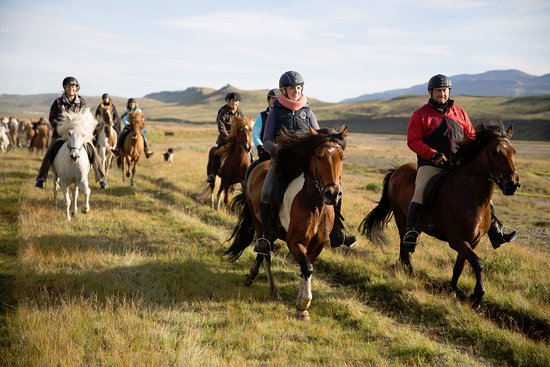 Varmahlid, Iceland: Hestasport Riding Tour