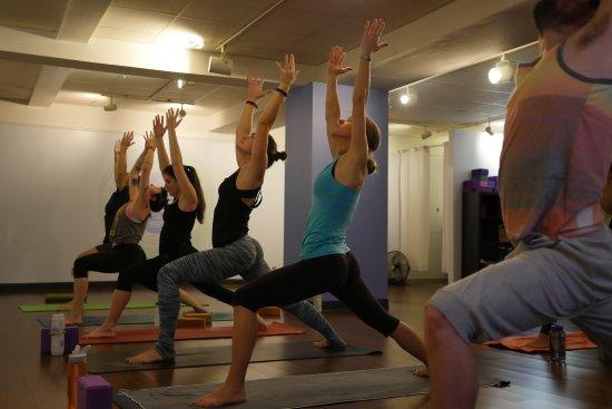 Pure Yoga Asheville: Warriors
