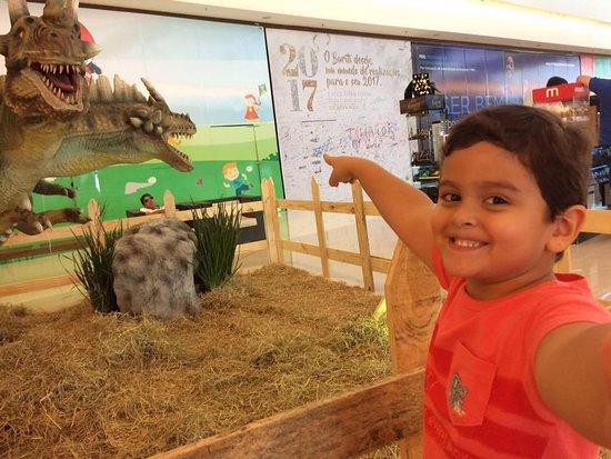 Rio Verde, GO: Meu filho na exposição de dinossauros no shopping