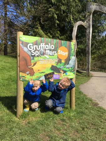 Grizedale Forest: photo8.jpg