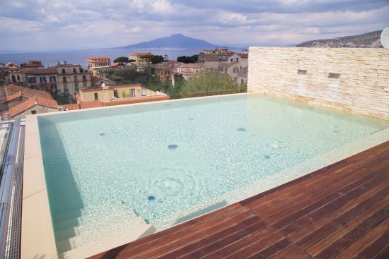 Hotel Plaza: Rooftop pool with view of Mt Vesuvius