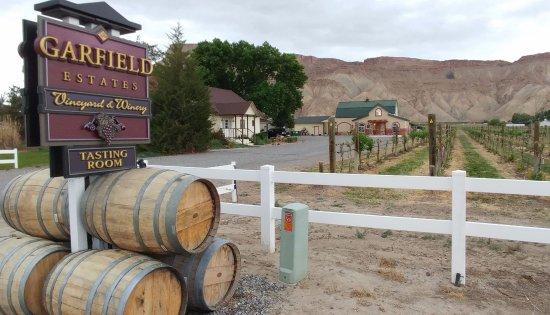 Palisade, Колорадо: Tasting room at back - behind house