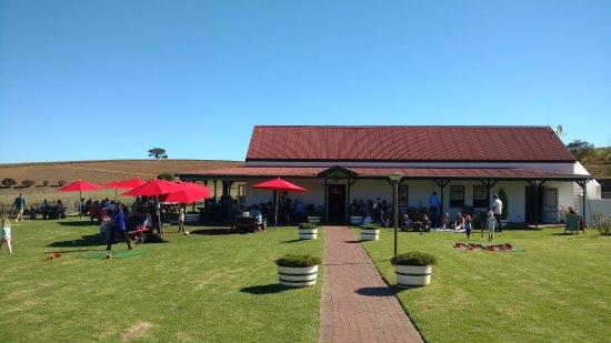 Ciudad del Cabo Central, Sudáfrica: Winery where we had braai for lunch