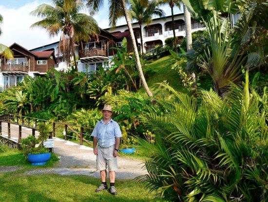 Hotel Villa Caribe: Vista del hotel desde el embarcadero