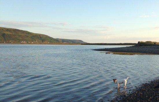 Dinas Mawddwy, UK: The Mawddach estuary