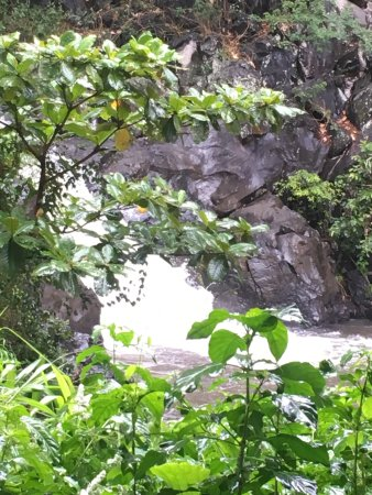 Guides of Oahu Day Tours : photo3.jpg