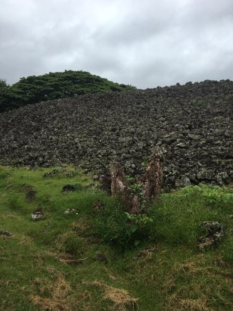 Guides of Oahu Day Tours : photo4.jpg