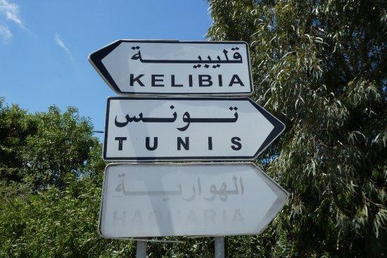 Ruins of Kerkuane : 最寄りの主要道の案内看板