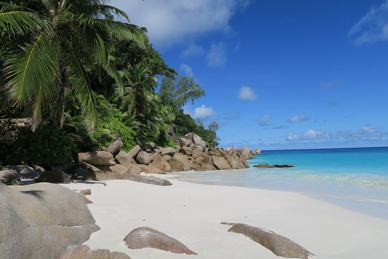 Anse Georgette: most beautiful beach anywhere