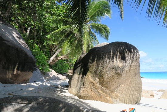 Praslin, Seychellen: Anse Georgette