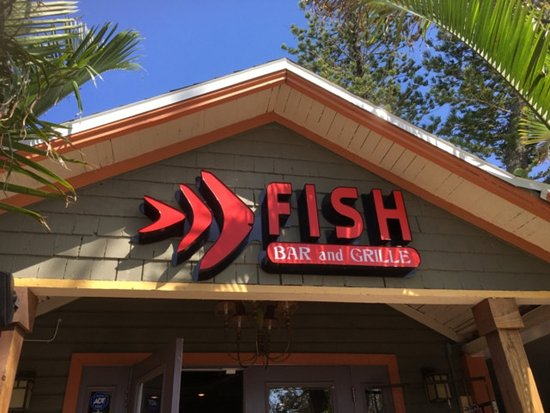 Welcome to fish bar and grill picture of fish bar and for Fish and grill