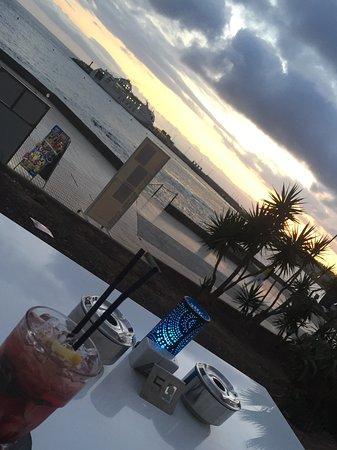 Royal Palm Apartments : San Miguel marina