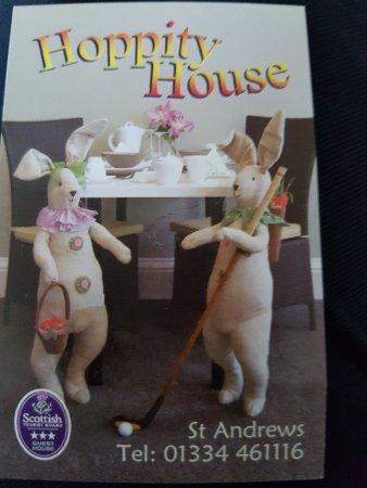 Hoppity House: TA_IMG_20170518_193329_large.jpg