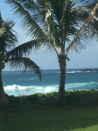 Laie Point State Wayside Park : photo4.jpg